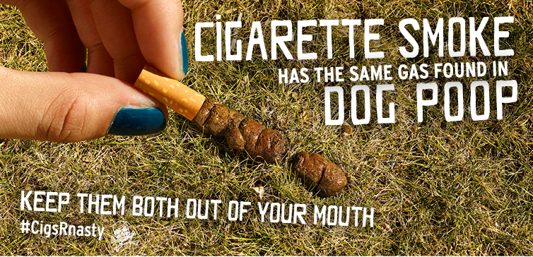 The same gas dog poop is an ingredient in cigarette smoke