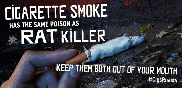Cigarette smoke contains the same ingredient that people use to kill rats